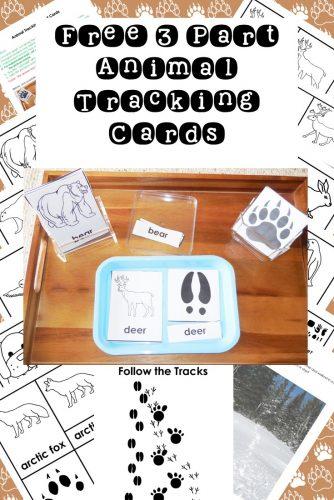 animal-tracking-3-part-cards-PDF-download