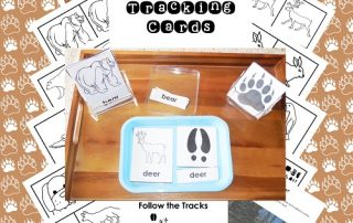 animal-tracking-3-part-cards-Montessori-inspired