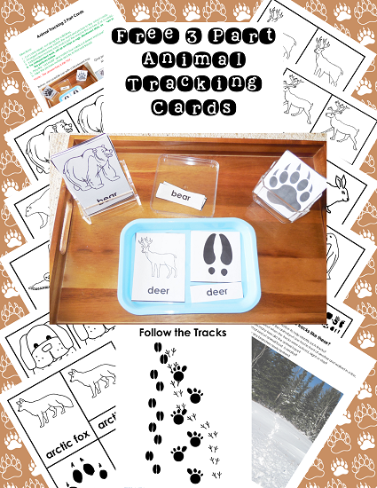 animal-tracking-3-part-cards-what-is-included