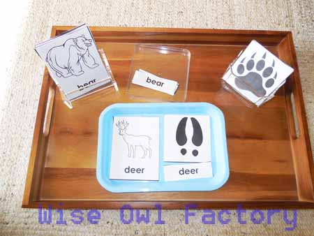 free-animal-tracking-3-part-cards-on-tray