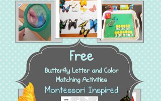 butterfly-free-printable-two-levels-color-and-butterfly-names