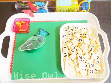 butterfly-toob-tray-set-up-with-letters