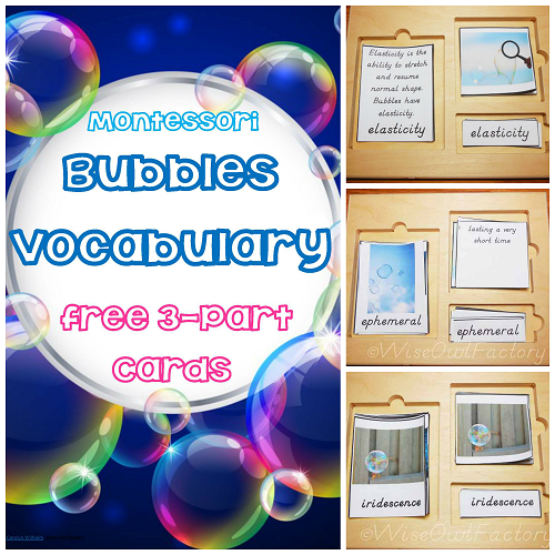 Bubbles Vocabulary Montessori 3 Part Cards with Definitions