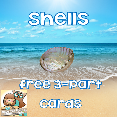 free shells 3 part cards printable 10 pages
