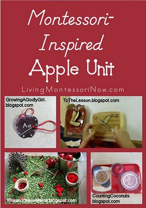 Montessori-Inspired-Apple-Unit