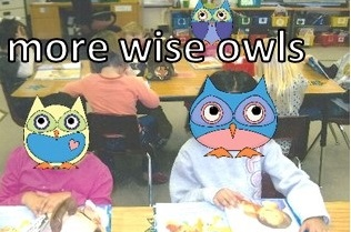 More wise owls hard at work learning!