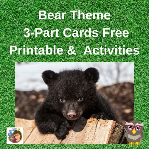 black-bear-3-part-cards-and-activities