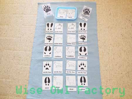 Betsy Bowen book written and illustrated free-animal-tracking-3-part-card-forest