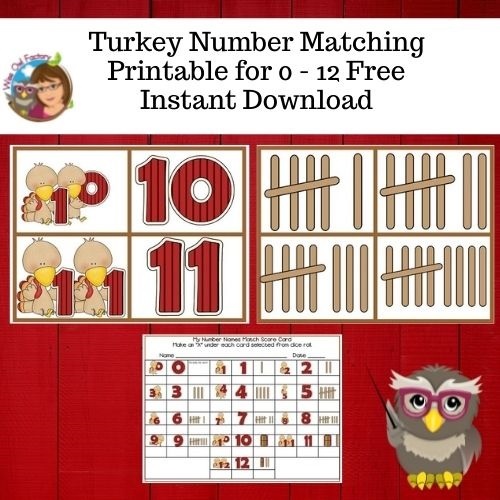 turkey-matching-0-thru-12-activity