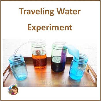 watch-water-walk-science-experiment