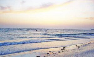 beach-near-Tampa-Bay-Florida-300x183
