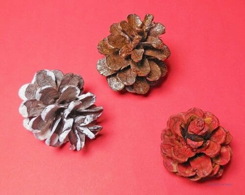hand painted pine cones in different colors