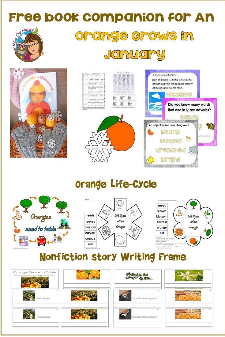 An-Orange-in-January-pictures-book-companion-freebie