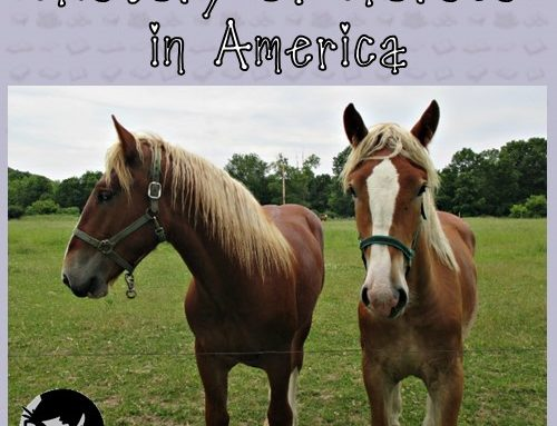 Color Graphing with Horses Free Activity PDF