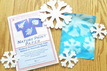 nature-print-paper-snowflake-activity