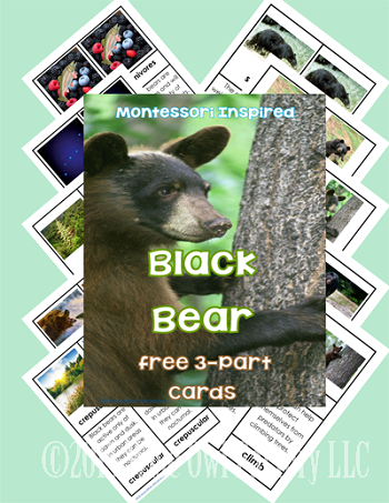 free-3-part-cards-black-bears-cards