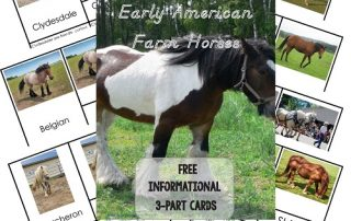 Horses-3-part-cards-free