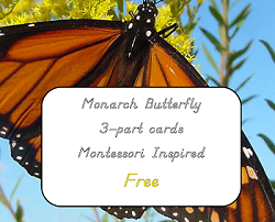Monarch-butterfly-3-part-cards-Montessori free printable