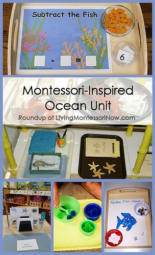 Montessori-Inspired-Ocean-Unit
