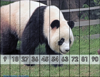 Panda-skip-counting-puzzle-sample-page