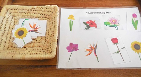 flowers-matching-mat-activity