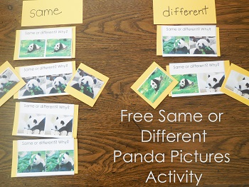 free-same-or-different-panda-pictures-activity