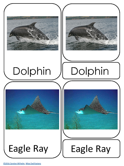 two of the animals included in the ocean-3-part-cards freebie