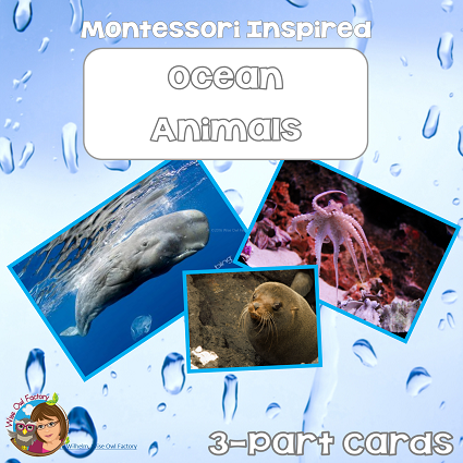 ocean animals Montessori inspired 3-part cards free