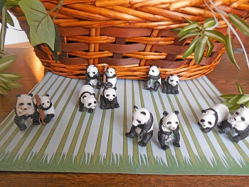 panda-pairs-different