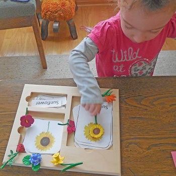 using-the-free-flowers-printable-with-a-3-part-tray-activity