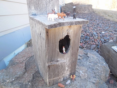 wild-animals-investigating-owl-house