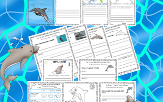 dolphin-writing-frames-fiction-and-nonfiction