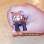 favorite-animal-red-panda