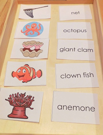 picture and word matching cards