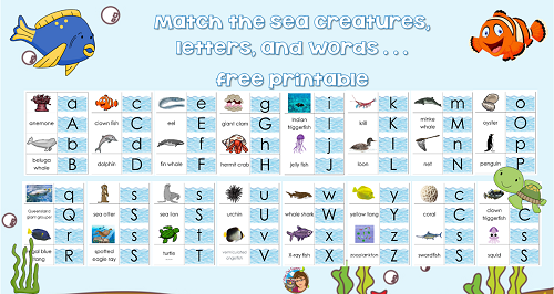sea-creatures-vocabulary