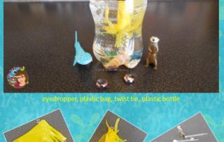 jellyfish-diver-STEM-experiment-information
