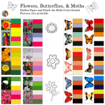 Matching Color Palettes for Flowers and Butterflies