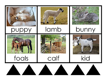 Montessori Grammar Farm Printable Cards