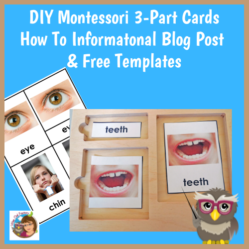 how-to-make-montessori-3-part-cards-and-free-templates