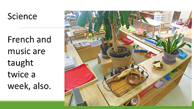 Science, French, and Music are also taught at Miniapple International Montessori