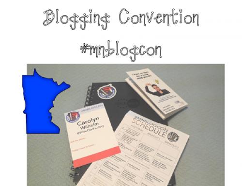 Minnesota Blogger Convention 2016