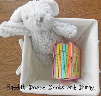 bunny board books and bunny toy
