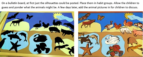 bulletin-board-for-animals-and-silhouettes
