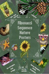 letter-size-teaching-posters-for-Fibonacci