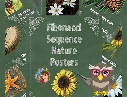 Fibonacci Sequence Nature Letter Size Posters