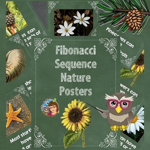 letter-size-teaching-posters-for-Fibonacci