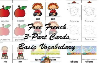 French-basic-words-3-part-cards