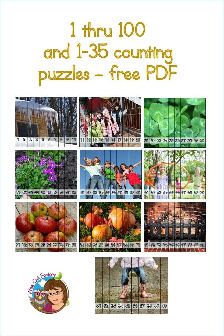 1-through-100-puzzle