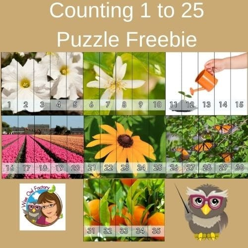 counting-puzzle-to-35-free-PDF