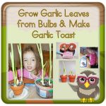 How to Easily Grow Garlic to Spice Bread at Home